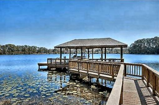 Need a dock built or repaired you come to the right place. Bettin Construction, LLC 28750  Walker Drive Wesley Chapel, FL.  33544 Call Today Ph 813-817-3099